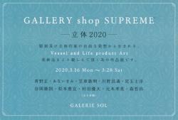 GALLERY shop SUPREME -立体2020-