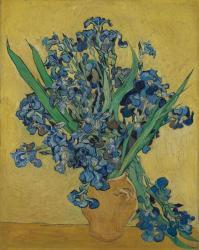 フィンセント・ファン・ゴッホ 《アイリス》1890年 油彩/キャンヴァス ファン・ゴッホ美術館、アムステルダム(フィンセント・ファン・ゴッホ財団)Van Gogh Museum, Amsterdam (Vincentvan Gogh Foundation)