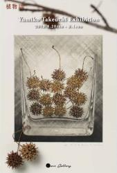 「seeds collection Ⅰ」18.2×15cm カッターナイフメゾチント、エッチング、アクアチント、雁皮紙刷り