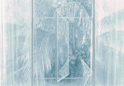 pivot window with coconut tree 151501p (c) Mayumi Terada  2015