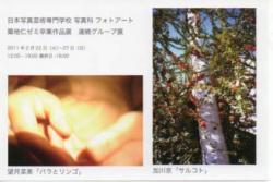 tukijizemi20110222.jpg