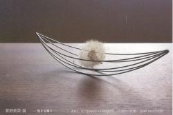 菅野美榮 展 -旅する種子ー