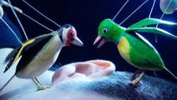 『The Princess and the Magic Birds(仮)』2020-2021年(メイキングビデオからのイメージ画像)