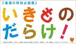 真夏の特別企画展『 いきものだらけ!』